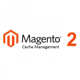 Magento 2: Full Page Cache issues
