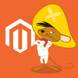 Magento Performance & Rescue